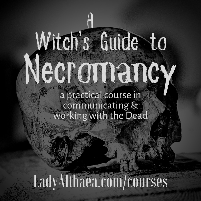 How to Learn Witchcraft